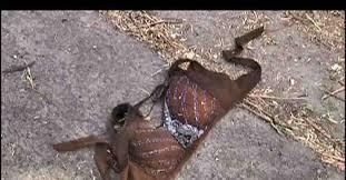 Murthal Rape evidences